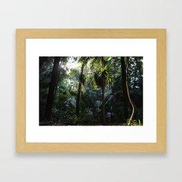 Lush Belizean Jungle Framed Art Print