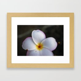 The beauty of the islands of Hawaii Framed Art Print