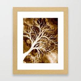 Weathered. Framed Art Print