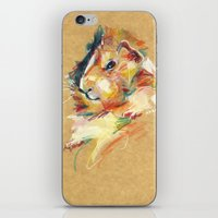 guinea pig iPhone & iPod Skins featuring Guinea pig II by Nuance