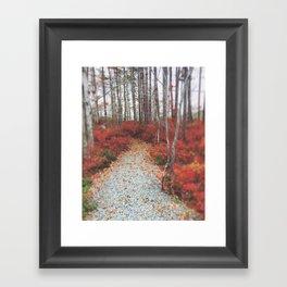 Autumn Wanderlust Framed Art Print