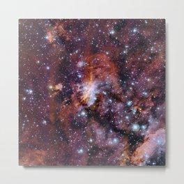 Prawn Nebula Metal Print