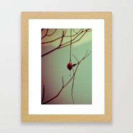 The Balloon Framed Art Print