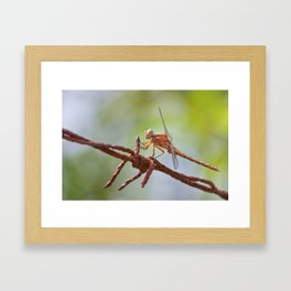 Nature in pastel shades Framed Art Print