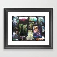 Arboretum Framed Art Print