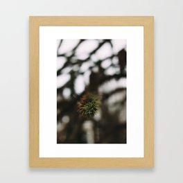 Winter Life Framed Art Print