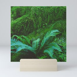 Mystical Green Fern Leaves in the Enchanted Forest Mini Art Print