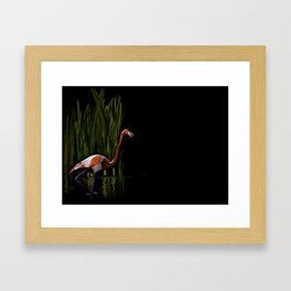 59 - Kerala flamingo Framed Art Print