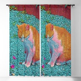 Popular Animals - Cat Blackout Curtain