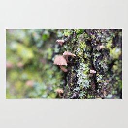 Mushroom - Macro Fungi on Tree Bark Rug