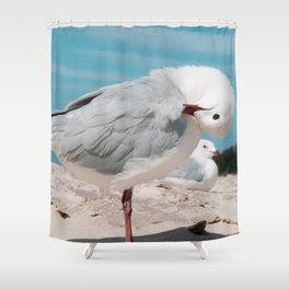 Seagull Byron Bay Beach Photography Australia Shower Curtain