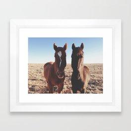 Horse Friends Framed Art Print