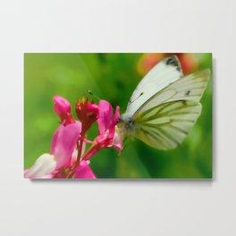 Butterfly's inn ... Metal Print