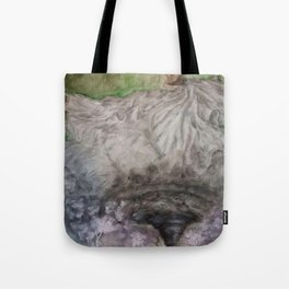 Dancer in the Storm Tote Bag