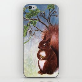 A fuzzy feeling - squirrel iPhone Skin