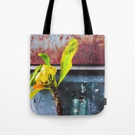 yellow euphorbia milii plant with old lusty metal background Tote Bag