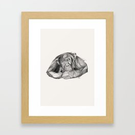Seven Monkeys – Sloth Framed Art Print