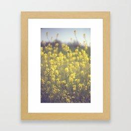 Mustard  Framed Art Print
