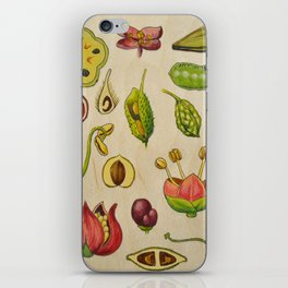 botany iPhone Skin