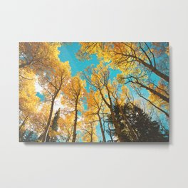 Rocky Mountain Autumn Metal Print