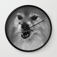 pomeranian Wall Clocks featuring Angry Pomeranian dog by Bruce Stanfield