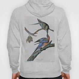 Passenger Pigeon - John James Audubon Hoody