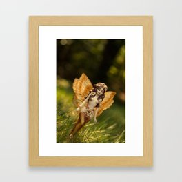 Fly away to your dreams! Framed Art Print