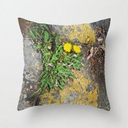 Floreecilla de banqueta Throw Pillow