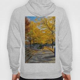 Autumn in NY Hoody