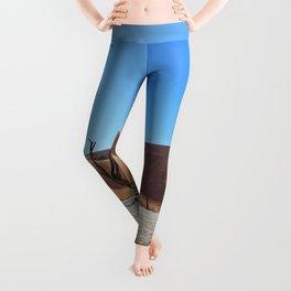 Sussusvlei Leggings
