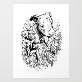 Color-Me Canine: Pitbull Art Print