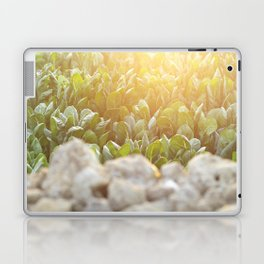 Sunset in Italy, fine art, landscape photo, Sicily photography, Puglia, Apulia, nature lover, love Laptop & iPad Skin