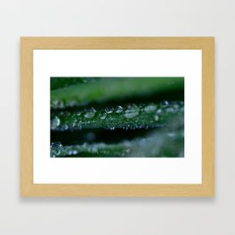 Beauty to find in so many ways... Framed Art Print