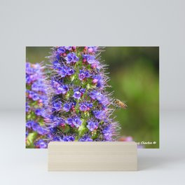 Bee's Knees Mini Art Print