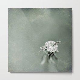 Wishful Thinking Metal Print