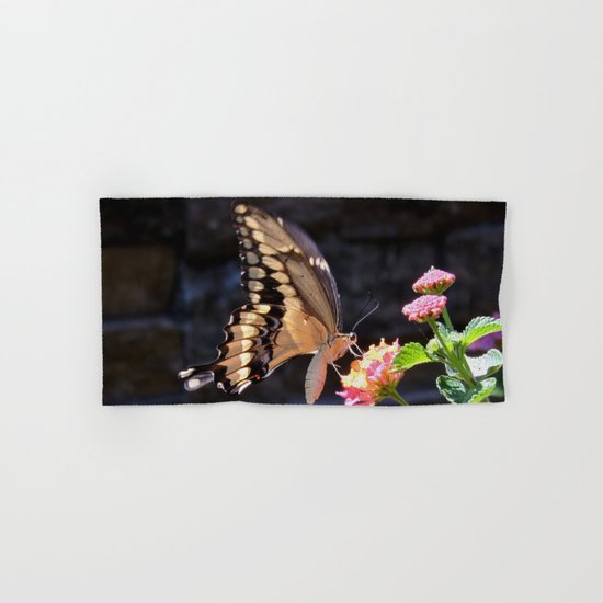 Swallowtail Overexposed Hand & Bath Towel