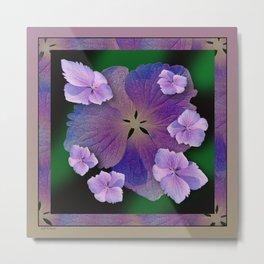 LACECAP HYDRANGEA FLOWER BOUQUET  Metal Print