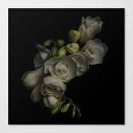 Hard Bloom Canvas Print