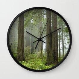 Foggy Forest Trail Wall Clock