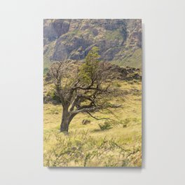 Windy Tree Metal Print