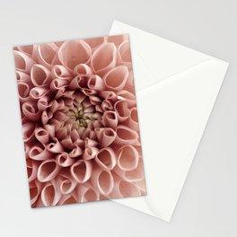 Blush Pink Flower Stationery Cards