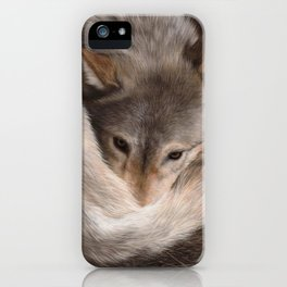 Timber Wolf Painting iPhone Case