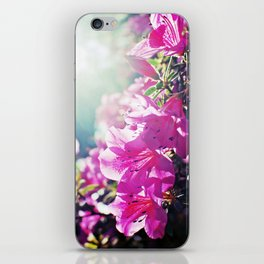 A Flare of Spring iPhone Skin