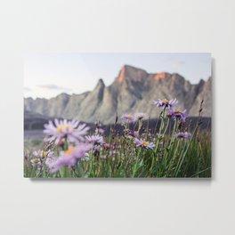 Wyoming Wildflowers Metal Print