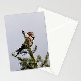 Northern Flicker  Stationery Cards