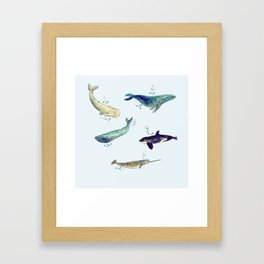 Bubbly whales Framed Art Print