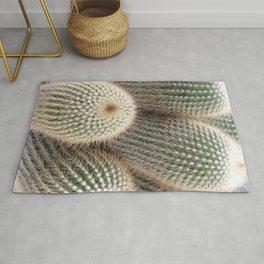 Cactus Photography Golden Desert Delight Plants Nature Botanical Art Rug