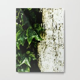 Ivy and stone Metal Print