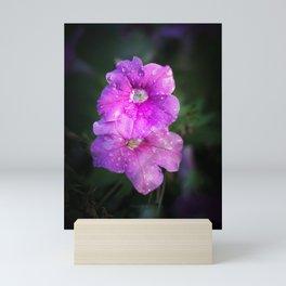 Wet Purple Impatiens Mini Art Print