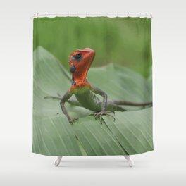 Gecko iguana Red Head Shower Curtain